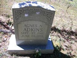 Agnes N Adkins
