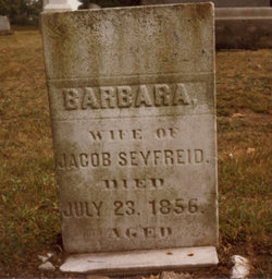 Barbara <i>Hare</i> Seifried