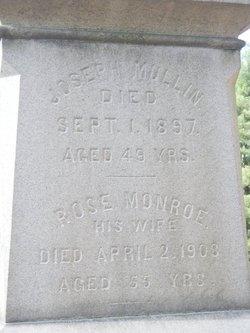 Rose <i>Monrow</i> Mullin