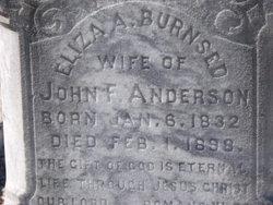 Eliza Ann <i>Burnsed</i> Anderson