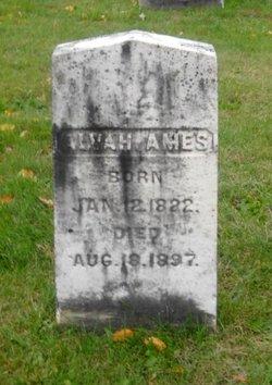 Alvah Ames