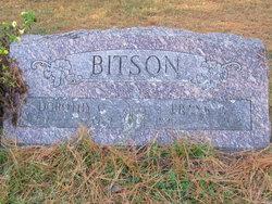 Frank P Bitson