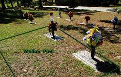 Dorothy <i>Ware</i> Walker