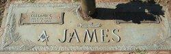 Cleland C James