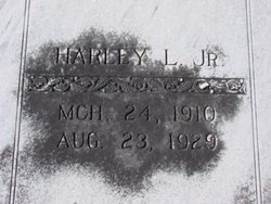 Harley Lafayette Akins, Jr