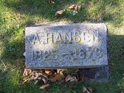 Anna <i>Tiedeman</i> Hansen