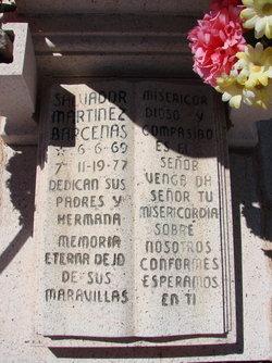 Salvador Martinez Barcenas