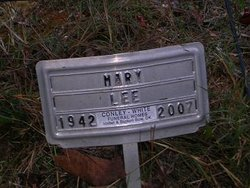 Mary Jane <i>Amos</i> Lee