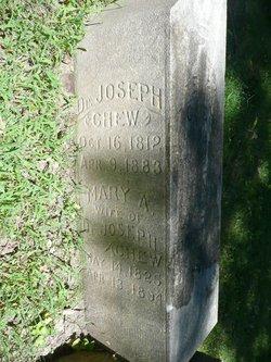 Dr Joseph Chew