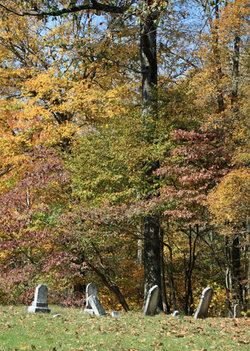 Young-Bloyd-Pierce Cemetery