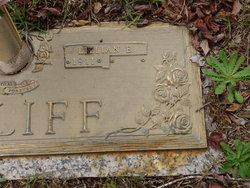 Lillian Elizabeth <i>Hall</i> Califf