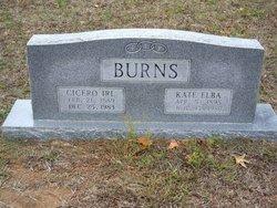 Cicero Irl Burns
