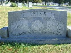 Lawrence E Akins