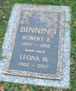 Dr Robert E Binning