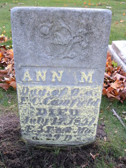 Ann M. Camfield