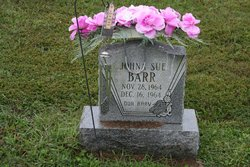 Johna Sue Barr