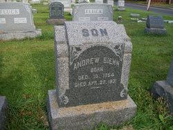 Andrew Biehn