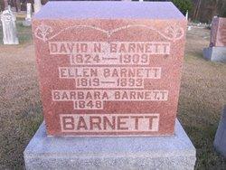 David Nelson Barnett