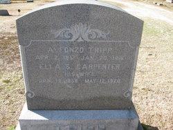 Alfonzo Tripp