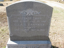 Ella S <i>Carpenter</i> Tripp