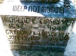 Eugene W. Lipsmeyer