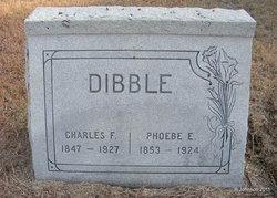 Phoebe Eliza <i>Priddy</i> Dibble