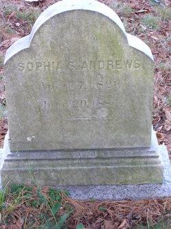Sophia S Andrews