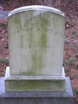 Catherine A Andrews