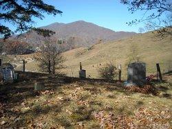 Owens Family Cemetery #01