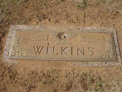 Egbert Andrew Wilkins, Jr