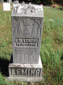 Ernest Brodie EB Leming