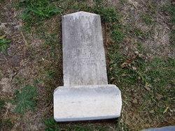 William H. Stewart