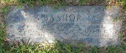 Michael Henry Bashor