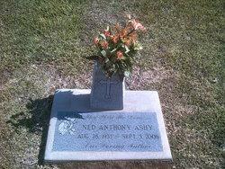 Ned Anthony Ashy