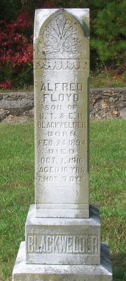 Alfred Floyd Blackwelder