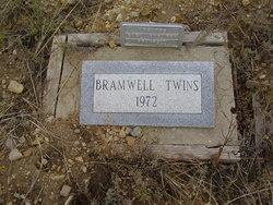 Frances Maxine Bramwell