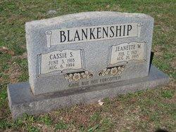 Jeanette <i>Witt</i> Blankenship