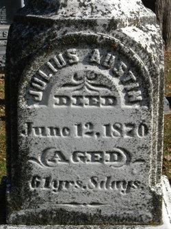 Julius Austin