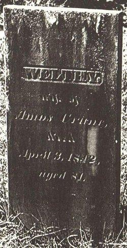 Welthy Crane