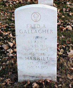 Fred A Gallagher