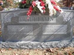 Samuel Copeland Williams