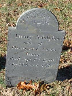 Henry Adolphus Gunn