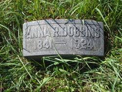 Anna R Dobbins