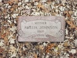 Amelia Johnson