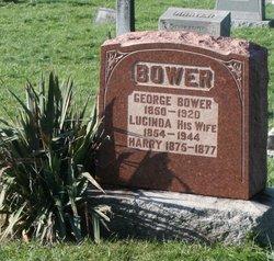 Lucinda Bower
