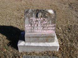 Julia E Allaway