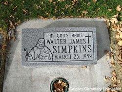 Walter James Simpkins