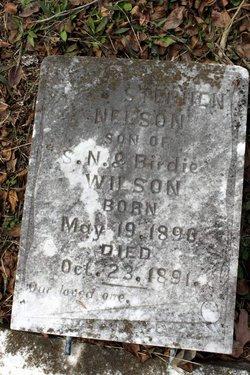 Stephen Nelson Wilson