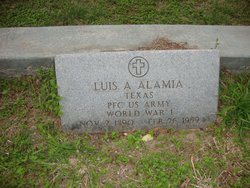 Luis Andres Alamia
