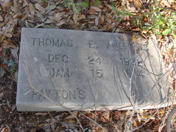 Thomas E Andrews